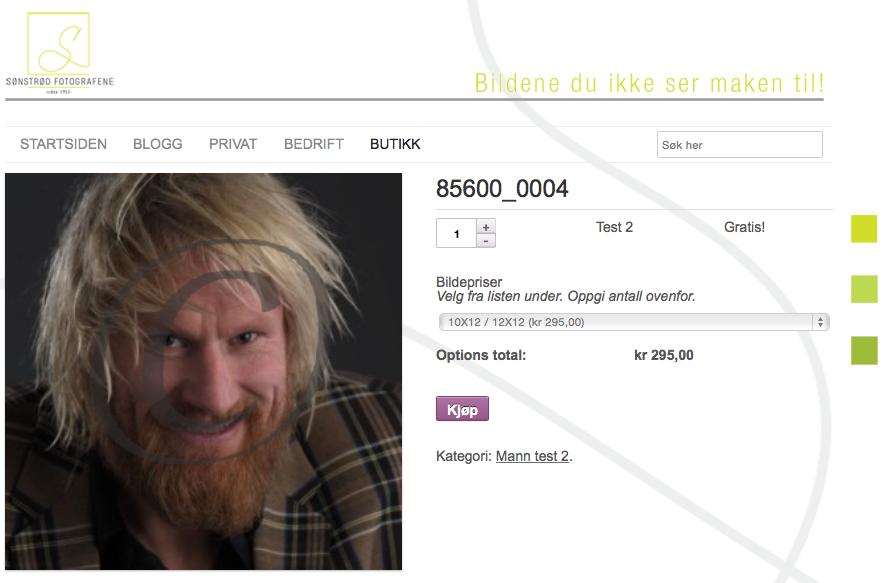 Nytt nettbutikksystem for fotografer på web